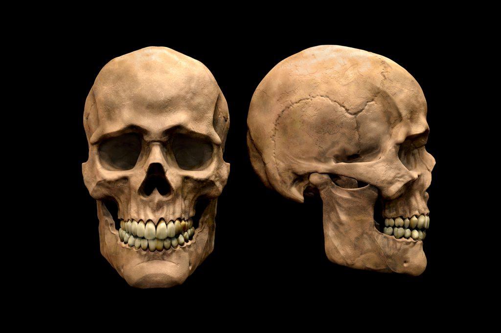capacidade reacional do osso